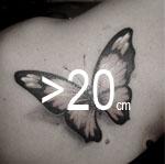 Borrado de tatuajes - Consultar precio